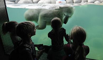 Beleef WILDLANDS Adventure Zoo voor maar € 17,50 p.p.